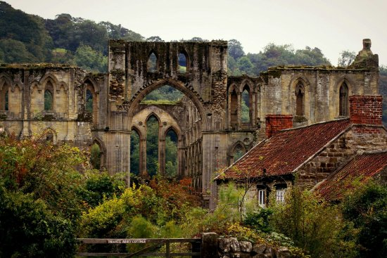 Helmsley, UK: rievaulx (3)_large.jpg