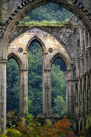 Helmsley, UK: rievaulx_large.jpg