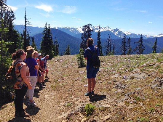Manning Park, Canadá: Wildflower interpretive walks 7days/week in summer