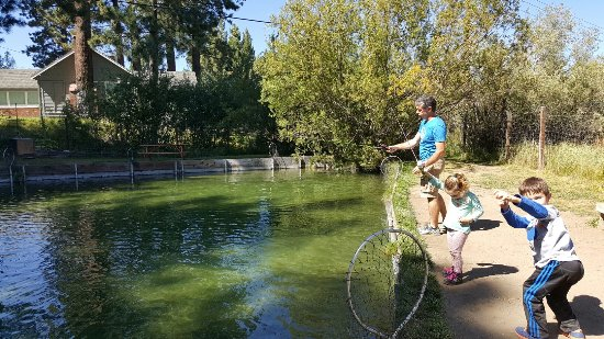 South Lake Tahoe, CA: Tahoe Trout Farm