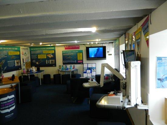 Fochabers, UK: Dlphin HQ