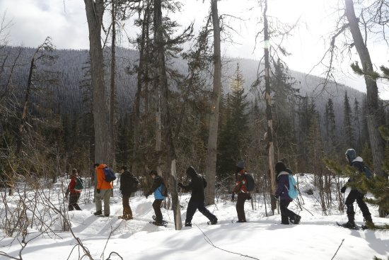 Manning Park, Kanada: Snowshoe guided tours through the Nordic Centre