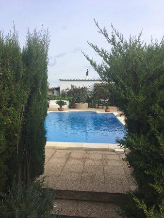 Sa Vinya D'En Palerm: View from bar
