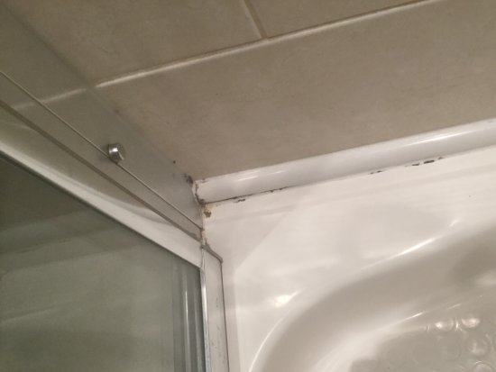 Barrow-in-Furness, UK: Mouldy shower cubicle