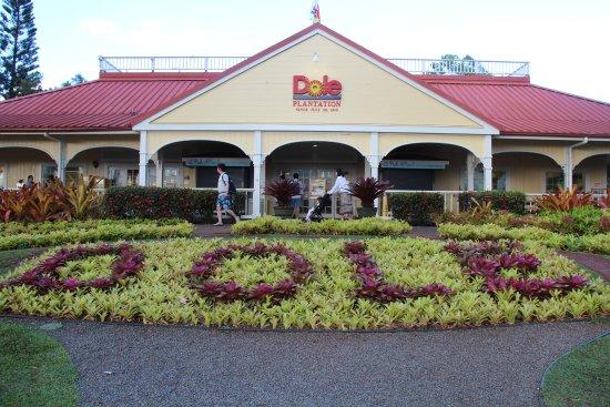 Wahiawa, Hawaï: Dole Plantation