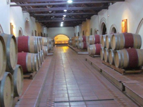 Lujan de Cuyo, Argentyna: Bodega Luigi Bosca Familia Arizu