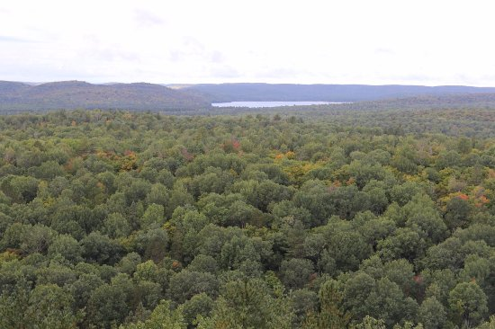 Algonquin Provincial Park, Canada: The view from the top of Lookout Trail