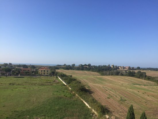Pomezia, Italia: photo2.jpg