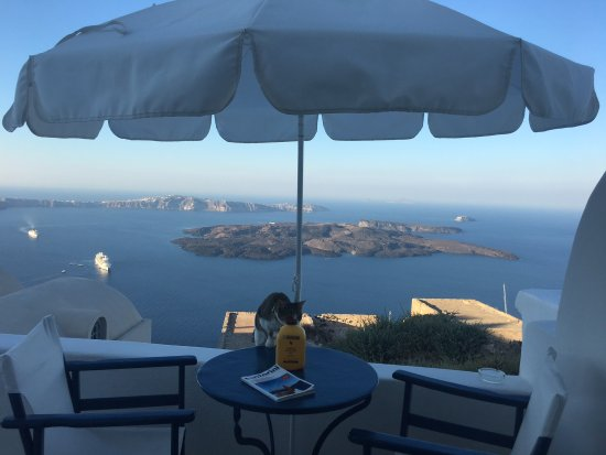 Arc Houses: The view with my favorite drink! Stunning!