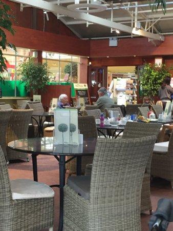 St. Peter, UK: Garden centre part of the diner