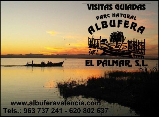 Visitas Guiadas Albufera P.N. El Palmar