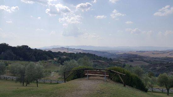 Montaione, Italia: 20160913_143708_001_large.jpg