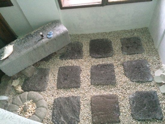 Sonya's Garden B&B: The floor in one of the showers is made up of flatstones and pebbles.