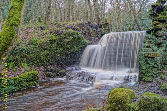 Rivelin Valley Nature Trail: Just one of the many water fals