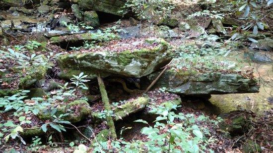 Saluda, NC: great hiding place