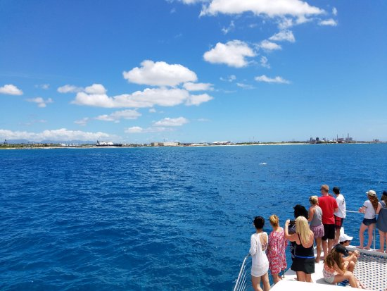 Kapolei, Χαβάη: Watching dolphins on the way to snorkeling site...
