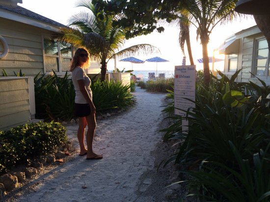 Zdjęcie Bungalow Beach Resort