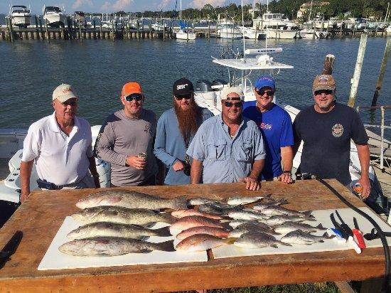 Caladesi Fishing Charters