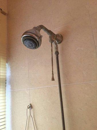 Green Oasis Home Boutique : Nos cobraron 1000 mxn por una fatídica noche. Cuando nos quisimos duchar nos encontramos esto. F