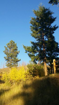 Woodland Park, CO: 20160925_181557_large.jpg