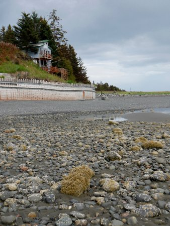 The Alaska Beach House: The Eagle's Nest from beach at low tide