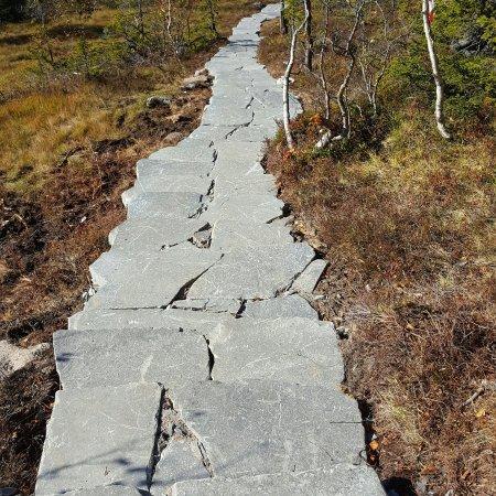 Trillemarka Nature Reserve
