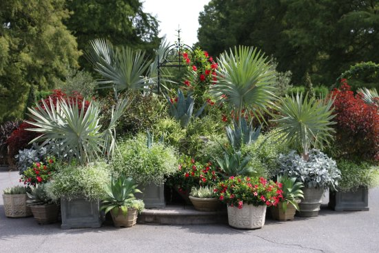 Kennett Square, Pensilvania: Grouping of different plants and flowers as you enter the garden area