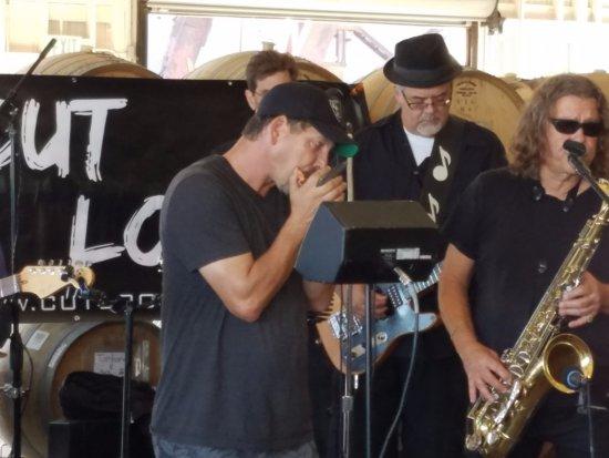 Richmond, CA: Dave Mathews on Blues Harp