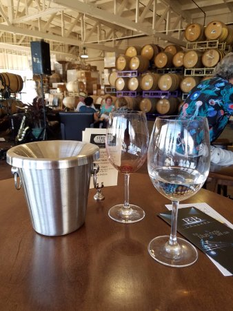 Richmond, CA: Good wine tasting