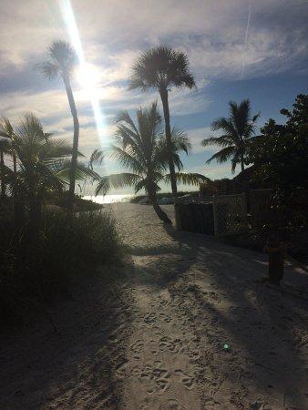 Tropical Beach Resorts: photo1.jpg