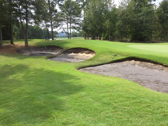 Pawleys Island, SC: These are some of the best shape Bunkers