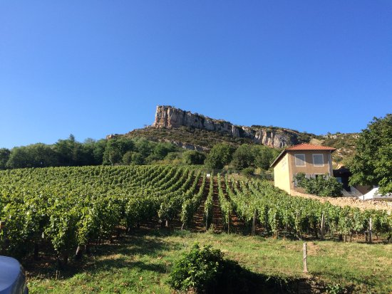 Azé, France : Een prachtige omgeving met uitgestrekte wijngaarden