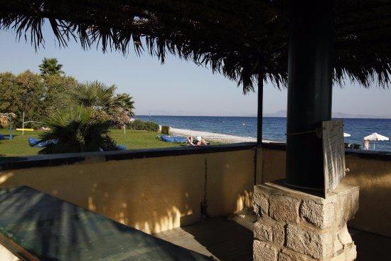 Area Blue Beach Hotel: gräsområdet innan stranden