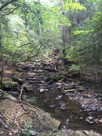 Monteagle, TN: photo2.jpg