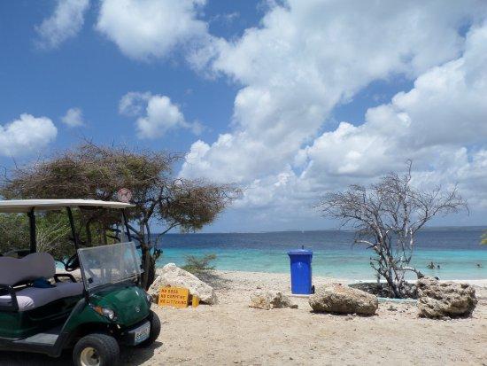 Kralendijk, Bonaire: Playa.