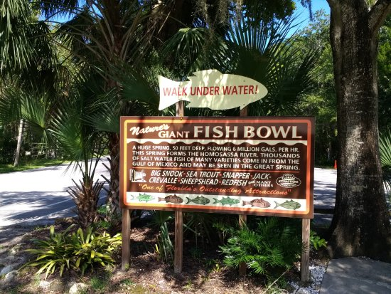 Homosassa Springs, Floride : sign