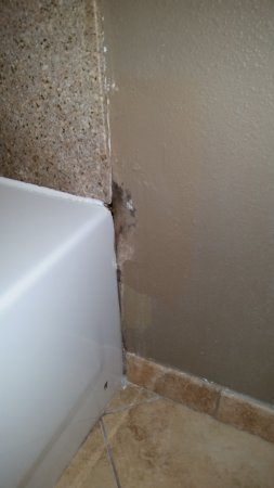 Seffner, FL: Other side of tub with very gross black mold on wall!