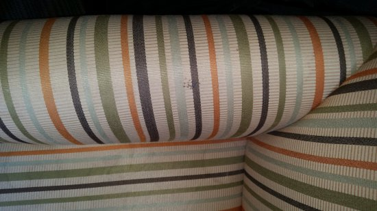Seffner, FL: Fabric on chair was stained and dirty.
