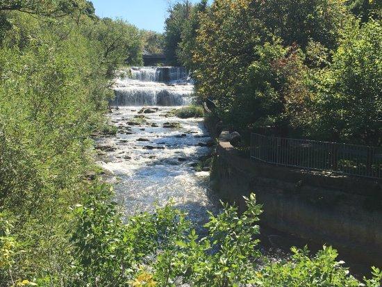 Williamsville, NY: Creek Behind Restaurant