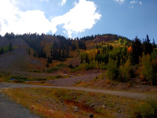 Silverton, CO: trees, silence ... loneliness: NATURE