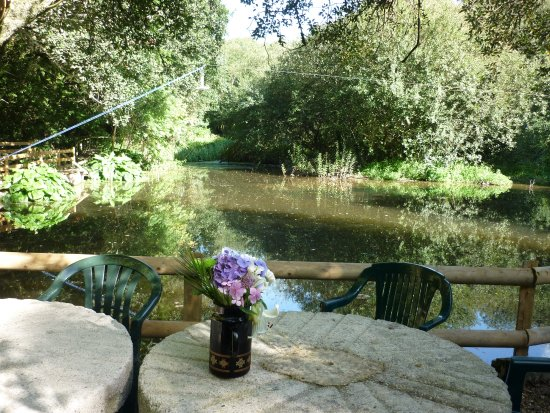 Veryan, UK: Tables overlooking pretty pond