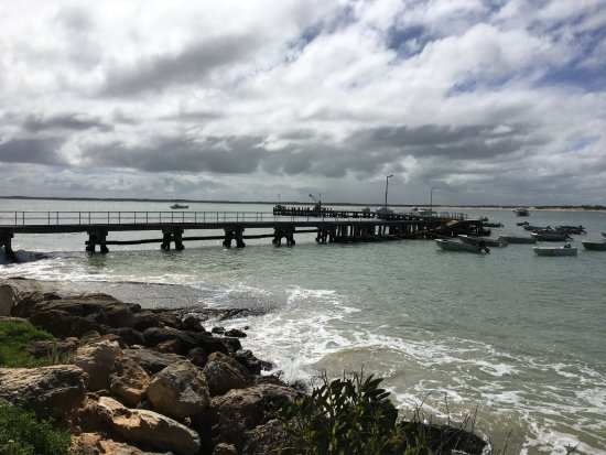 Penola, Αυστραλία: Ocean - 1 hour drive (lovely drive)