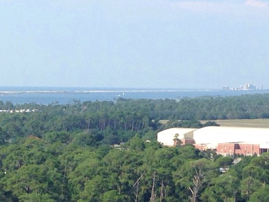 Pensacola Lighthouse and Museum: Views from lighthouse at Pensacola