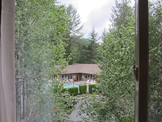 Welches, Oregón: View from our room, Forest trees everywhere