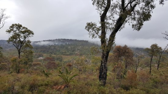 Mundaring, Australia: Misty Morning start