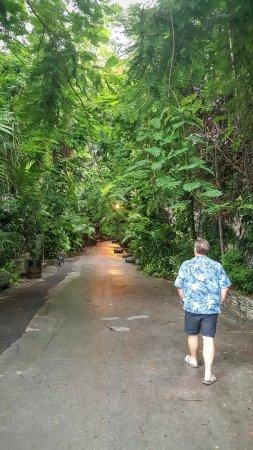 Bilde fra New Providence Island