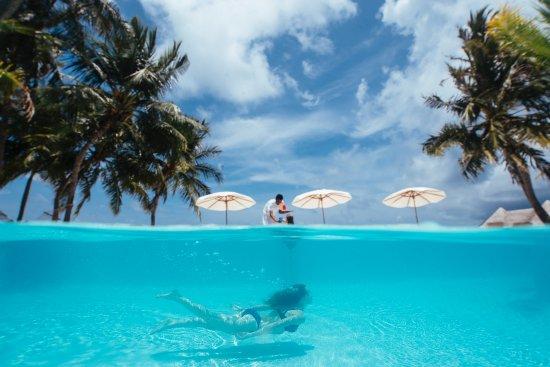 Gili Lankanfushi Maldives: Swimming in the Crystal clear beachside pool