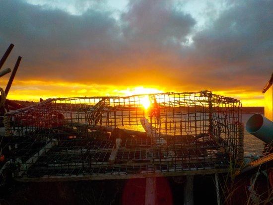 Mariner Cruises: Daybreak on Brier Island