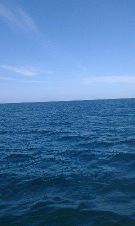 Laguna Mar: 20160920_080538_large.jpg