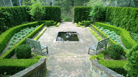 Windyridge Garden
